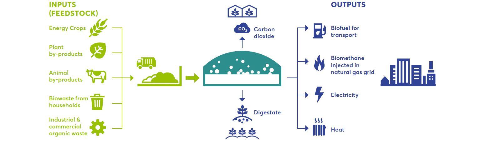 """Featured image for """"2021 a tutto biogas: spingere il piede sull'acceleratore per trasformare il rifiuto in risorsa"""""""